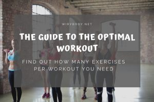 exercises-per-workout